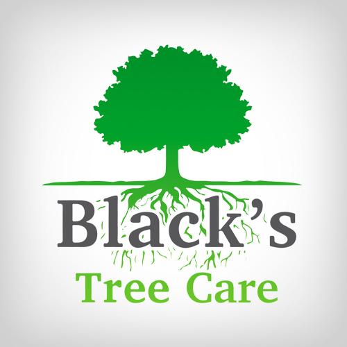 Black's Tree Care