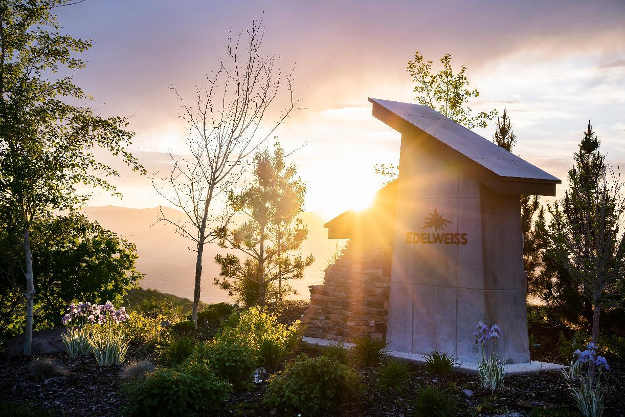 Edelweiss/Suncrest